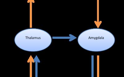 Activering door triggers: twee systemen
