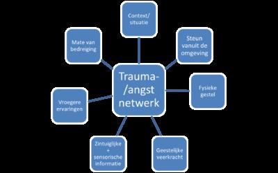 Trauma-netwerk